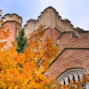 Autumn trees on display at CU Boulder