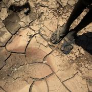 Feet standing on dry, cracked earth