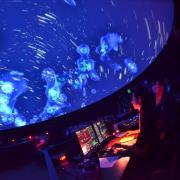 Fiske laser show