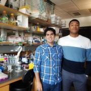 Giancarlo Bruni and Thomas J. Yao in the Joel Kralj Lab at CU Boulder