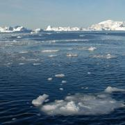greenland sea ice cover