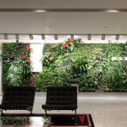 Modern office with green wall of plants