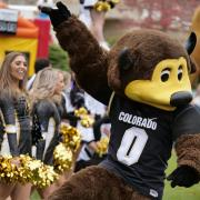 Chip and the spirit squad entertaining during Homecoming Weekend