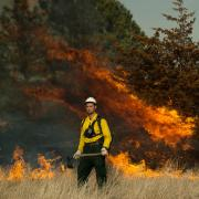 A man stand near a prescribed burn.