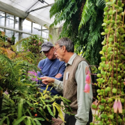 Tom Lemieux speaks with a man inside CU Boulder's EBIO greenhouse.