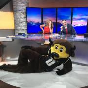 Chip helps promote College Friday on the set of 9News, a day supporting higher education in Colorado. Photo from the Colorado Department of Higher Education.