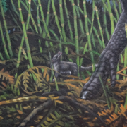 Artist's depiction of Late Cretaceous mammal