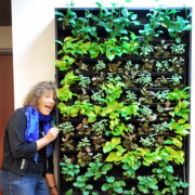 """Conference Service's """"Living Wall"""""""