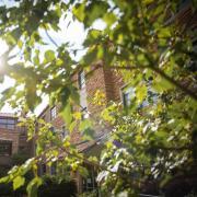 A scenic shot of the CU Boulder campus