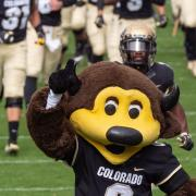 Mascot Chip storms the field with CU football players