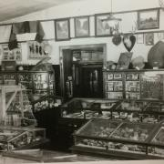 Old photo of the natural history museum at Hale
