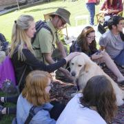 Students pet dog at the first-ever CU Boulder dog café