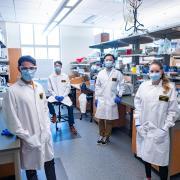 CU researchers in the lab