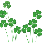Clover leaves graphic
