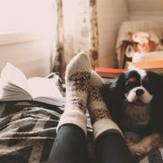 person in cozy socks reading a book and drinking coffee with small dog
