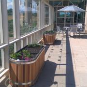 Gardens on SEEC atrium