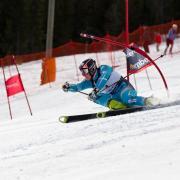 Skiier races slalom