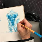 Track and field coach Lindsey Malone sketches a Buffalo. Instagram photo by @coachlindseymalone.