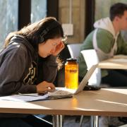 Student studying at laptop on campus