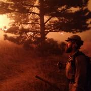 A firefighter works a fireline during the Sunshine Canyon fire on March 19, 2017