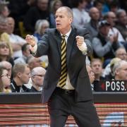 Men's basketball head coach Tad Boyle on sidelines