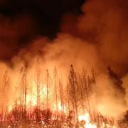 Rim Fire Yosemite