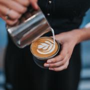 barista pours latte