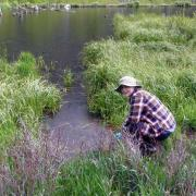 Student explores marsh as part of UROP project