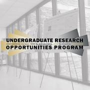 Undergraduate Research Opportunities Program | Be Curious. Be Collaborative. Be Creative.