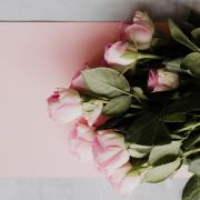 Stock image of roses