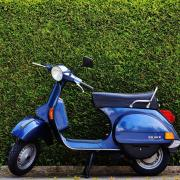 Blue Vespa scooter parked in front of tall, green bushes