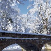 Varsity Lake Bridge in winter