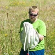 Benjamin Bruffey looks at a bumblebee he has caught in a net. (Photo by Patrick Campbell/CU Boulder)