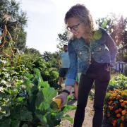 Professor Jill Litt looks at a squash at a community garden next to Regis University in Denver