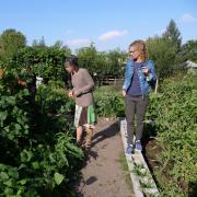 Professor Jill Litt, far right, looks over a participant garden with her research assistant Erin Decker