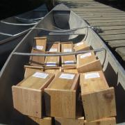 A canoe loaded with nest boxes, ready to be installed in the field to create a new study site. (Photo by Tess Forstner.)