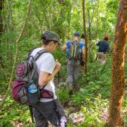 Group walks through jungle
