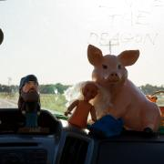 Figurines on a dashboard