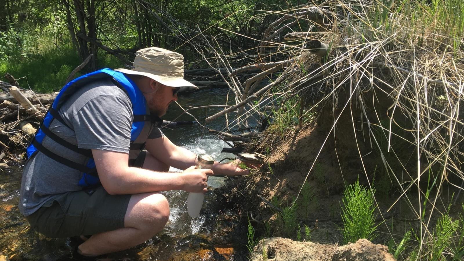 Researcher taking water sample in creek