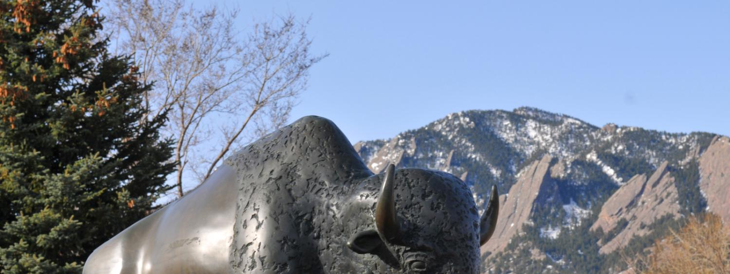 Bronze statue of buffalo with blue sky in background.