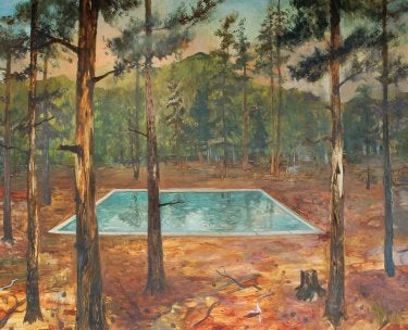 """""""Swimming Pool in the Woods (Roosevelt N.F."""" by John Defeo"""