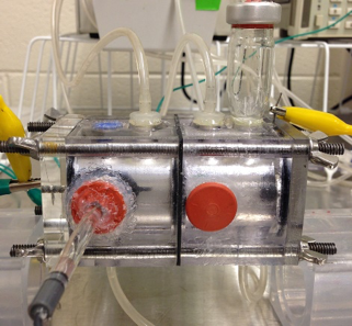 Carbonate products analyzed by XRD crystal phase analysis (Jason Ren)