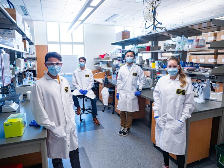 darwin bio team
