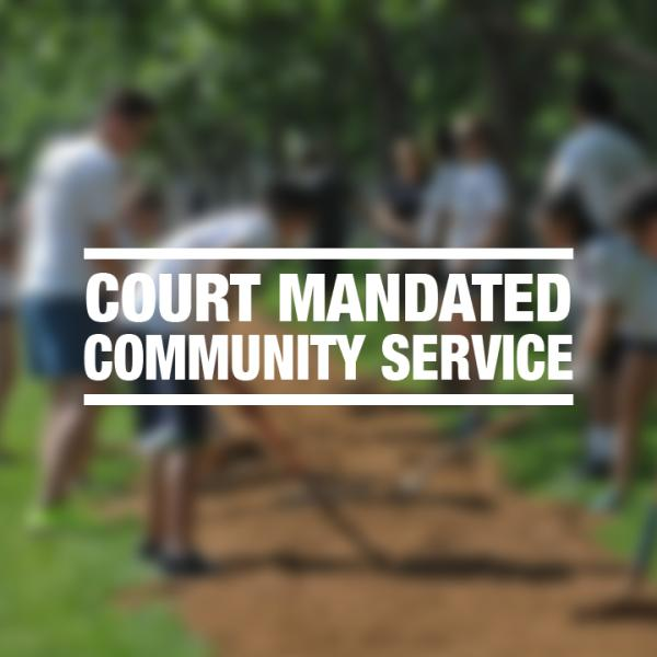 """White text reading """"court mandated community service"""" over a faded photo of a group with shovels"""
