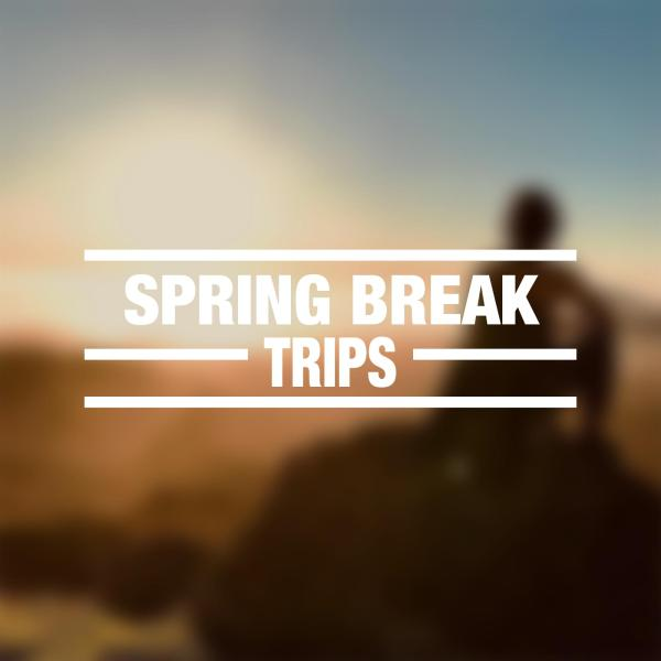 """blurry sunset photo with """"spring break trips"""" overlayed"""